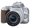 Canon EOS 250D + 18-55 IS STM silver inkl. 64Gb