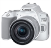 Canon EOS 250D + 18-55 IS STM vit inkl. 64Gb